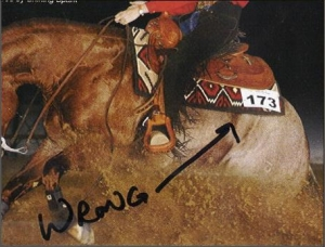 Reining Horses - Wrong